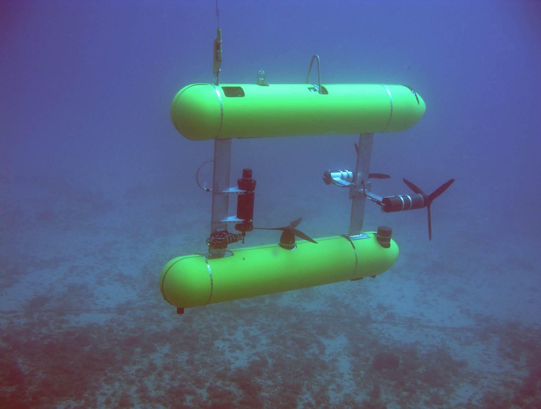 Hawaii deepwater bottomfish survey | NOAA Pacific Islands Fisheries Science Center Blog