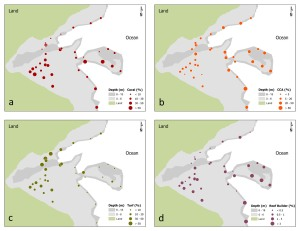 Figure 2. Spatial comparison of mean cover (%) values for (a) live hard corals, (b) crustose coralline algae (CCA), (c) turf algae and spatial comparison of (d) values of the reef-builder ratio (ratio of mean cover for corals and crustose coralline algae combined to cover for nonaccreting organisms) from line-point-intercept surveys conducted in March–August 2012 in Faga`alu Bay off the island of Tutuila in American Samoa.