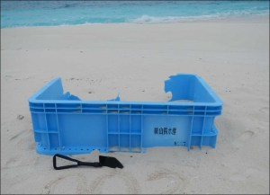 During shoreline surveys on April 6, the team found this blue plastic tub on the southwestern corner of Sand Island, Midway Atoll. It has not yet been confirmed if this tub came from Japan as a result of the March 2011 tsunami event. NOAA photo by Kristen Kelly