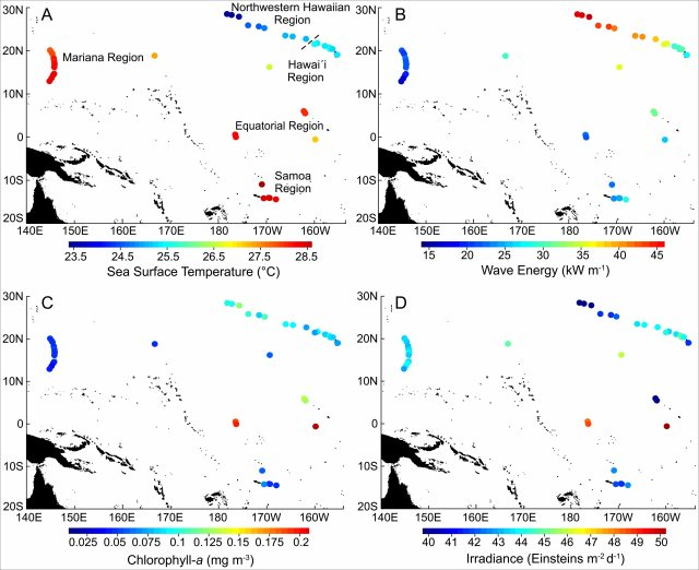 Long-term means in (A) sea-surface temperature, (B) wave energy, (C) chlorophyll-a concentration, and (D) irradiance in coral reef ecosystems across the U.S. Pacific.
