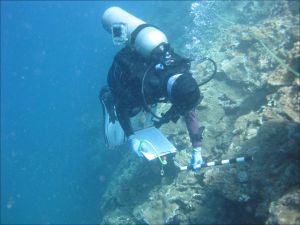 Benthic team member and NOAA diver Hatsue Bailey conducts coral disease surveys using the belt-transect method on May 4 in Hanalei Bay, Kaua`i. NOAA photo Bernardo Vargas-Ángel