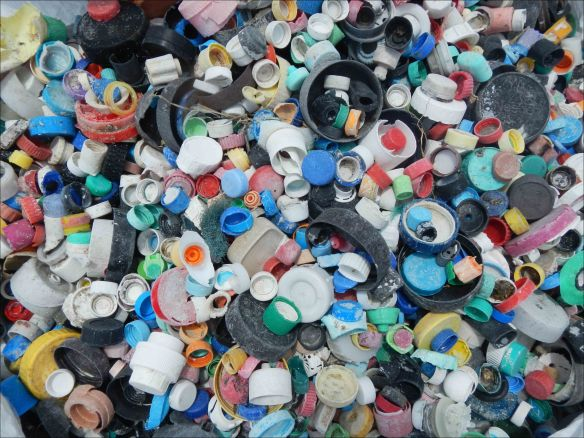 This photo, taken at the end of this mission on April 18, shows some of the 4781 bottle caps collected from Midway Atoll shorelines by a 9-member team from the PIFSC Coral Reef Ecosystem Division. NOAA photo by Kristen Kelly