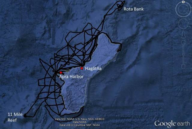 Figure 2-Guam survey tracklines