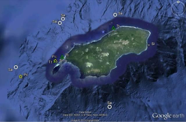 Figure 6 - Rota cetacean sightings