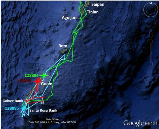 Figure 8 - Guam Pilot Whale track update