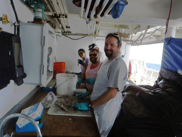 Cutting Bait - PIFSC Science Operations staff working with Monterey Bay Aquarium scientist to prepare squid bait for bottom fishing. Pictured: Eric Mooney (front) Tommy Knowles (second from front) Eric Breuer (hidden) and Louise Giuseffi (in back).