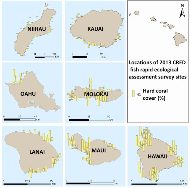 Figure 2. Mean hard coral cover (%) at sites surveyed.