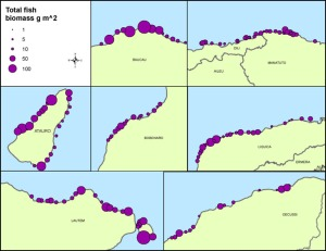 Figure 1. Total fish biomass (g m-2) by district or area from stationary-point-count surveys conducted at 150 sites off the northern coast of Timor-Leste in June 2013.