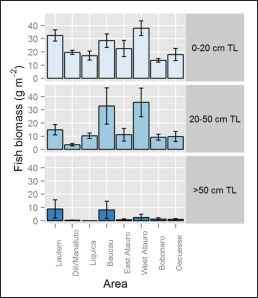 Figure 2. Total fish biomass (g m-2) by district or area and size class from stationary-point-count surveys conducted at 150 sites off the northern coast of Timor-Leste in June 2013. Error bars indicate ±1 standard error of the mean.