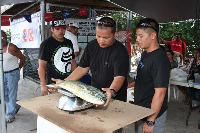 Eric Cruz weighs a mahi mahi while Carl Dela Cruz and Jacob Mata verify the weight.   Photo Credit: Edward B. San Nicholas