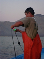 Fishermen in small fishing communities along the Baja California coast have been critical collaborators in testing the use of net illumination as a strategy to reduce sea turtle bycatch.