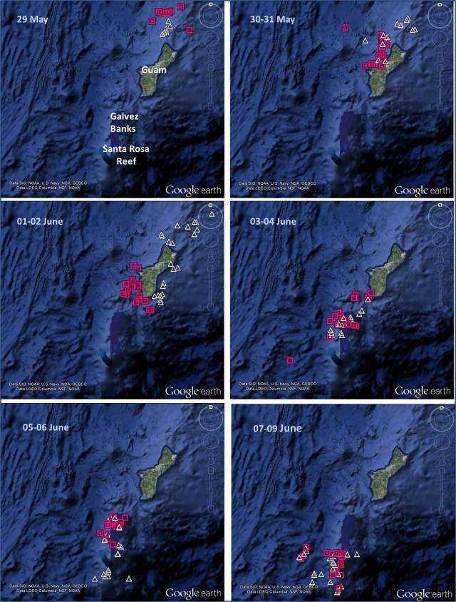 Figure 1: Satellite tag locations of two adult male short-finned pilot whales (tag ID#s 128920-pink squares and 128914-white triangles) tagged off of Guam on 19 and 25 May 2014.