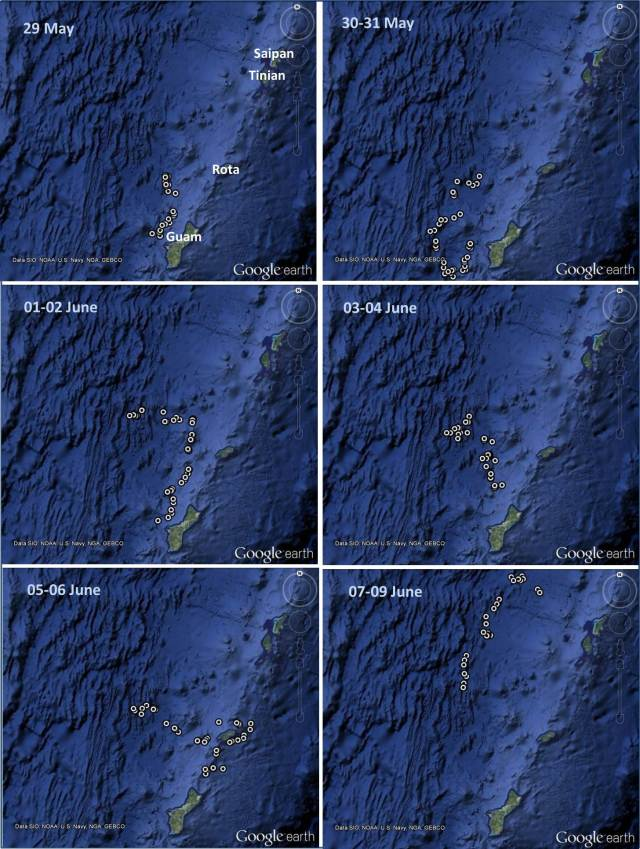Figure 4: Locations of satellite tag ID# 128887 deployed on an adult false killer whale on 21 May 2014.