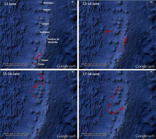 Figure 5: Tracks of satellite tag ID# 128888 deployed on an adult false killer whale off of Tinian on 12 June 2014.