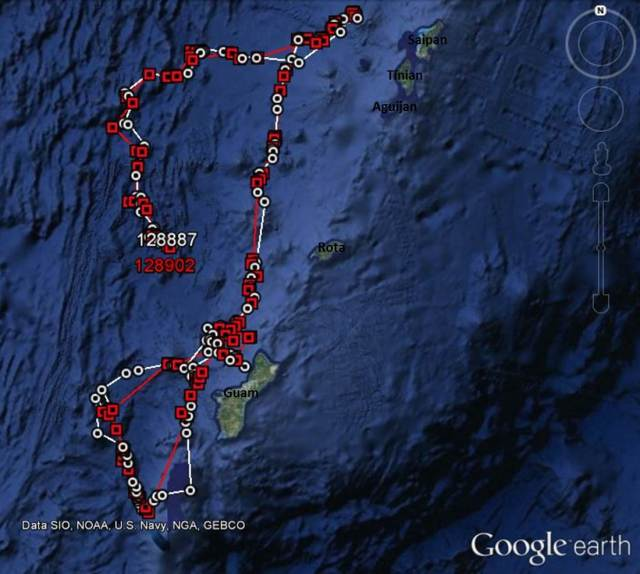 Figure 6: Satellite tracks of false killer whales tagged off of Guam on 21 May (ID# 128887 and 128902).