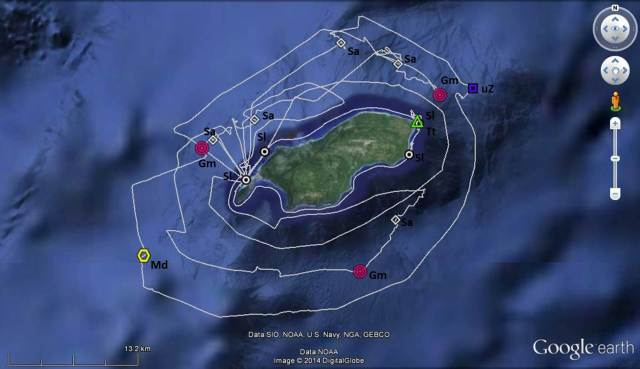 Figure 1: Survey tracklines (grey lines) and cetacean sightings around Rota (16-21 June, 2014). Gm- Globicephala macrorhynchus (short-finned pilot whale), Md- Mesoplodon densirostris (Blainville's  beaked whale),  Sa- Stenella attenuata (pantropical spotted dolphin), Sl- Stenella longirostris (spinner dolphin), Tt- Tursiops truncatus (bottlenose dolphin), uZ- unidentified Ziphiid whale (unidentified beaked whale).