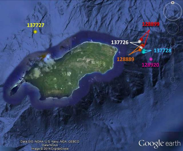 Figure 2: Satellite tag locations of short-finned pilot whales between 15:00 and 16:00 on 17 June.