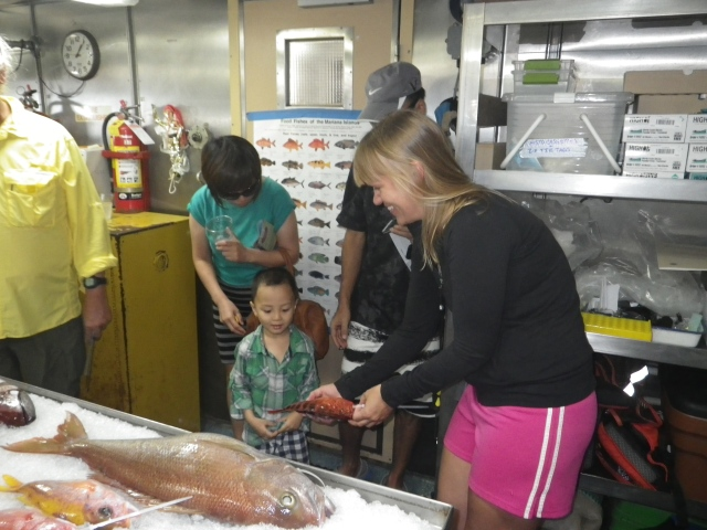 Fish Specialist, Megan Sundberg shows a grouper to a future marine biologist.