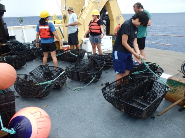UOG students prepare traps to send to the seafloor