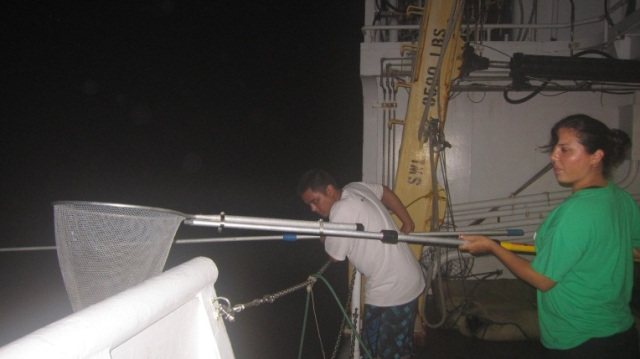 UOG students AJ Reyes and Taryn Mesa night light dip netting for fish samples