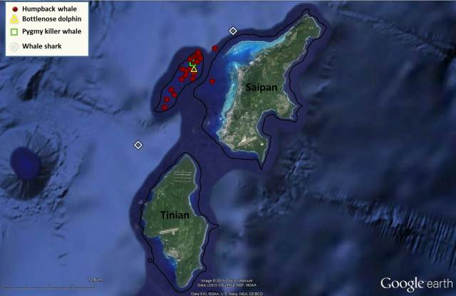 Figure 3_Marianas 2015 winter sightings