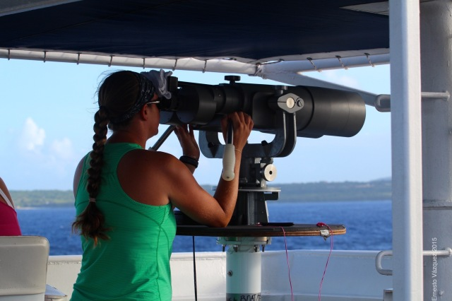 Observer Andrea Bendlin on watch, scanning the ocean for Cetaceans through the Big-Eyes. - Photo by: Ernesto Vasquez