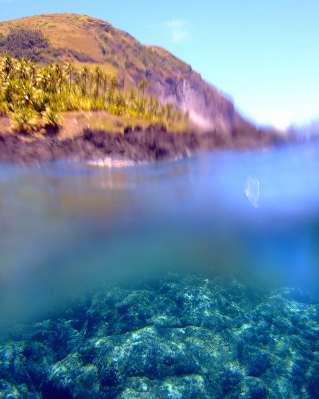 Socioeconomic Monitoring For The Micronesia Challenge