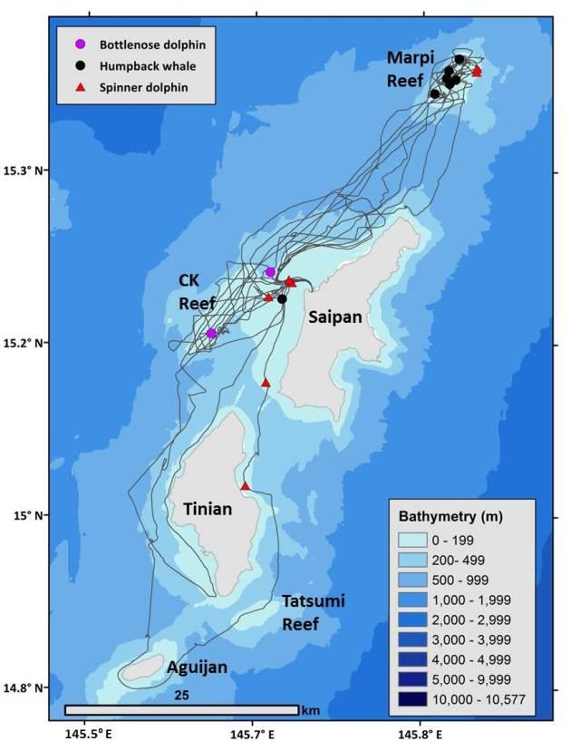 Figure 1_Marianas 2016-winter tracks and sightings (1)