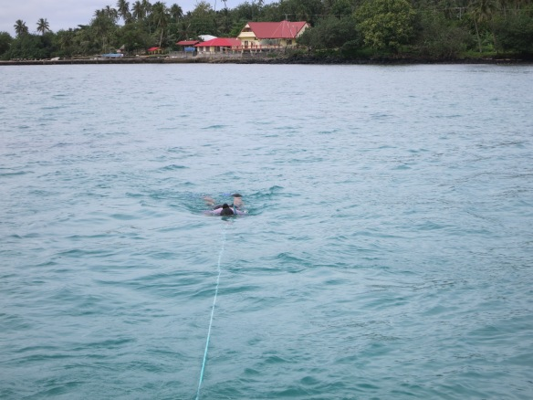Figure 3. MNRE staff surveying the seagrass beds and collect samples around Manono tai Island.