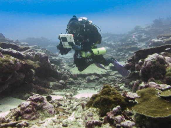 Figure 2: The divers will spend up to an hour hovering over the reef and counting fish. Notice the lack of bubbles escaping from Ray Boland's re-breather unit.