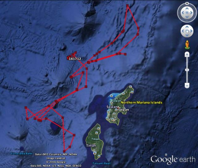 Figure 4: Track of a satellite tag (ID 141712) attached to a sperm whale off Saipan on 17 May 2016.