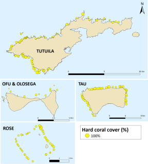 Figure 2. Mean hard coral cover at sites surveyed.