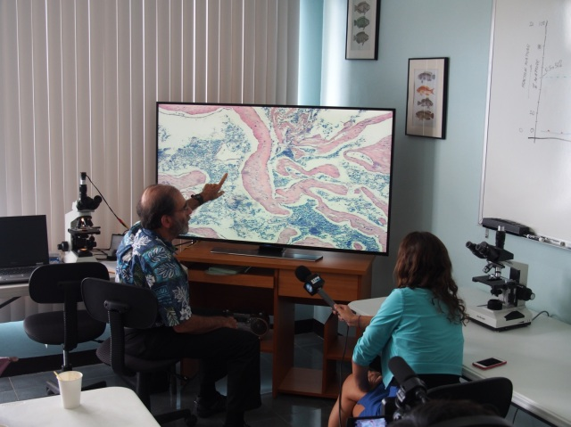 Ed DeMartini explains a projected image of a histology slide to the newspaper reporter.