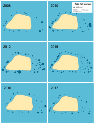Figure 3. Total fish biomass at sites surveyed per year.
