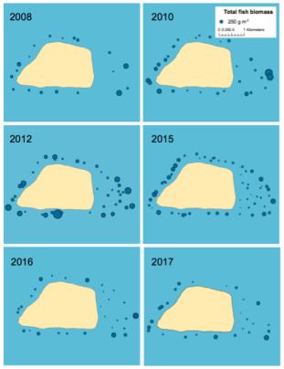 Figure 3. Total fish biomass at sites surveyed per year.