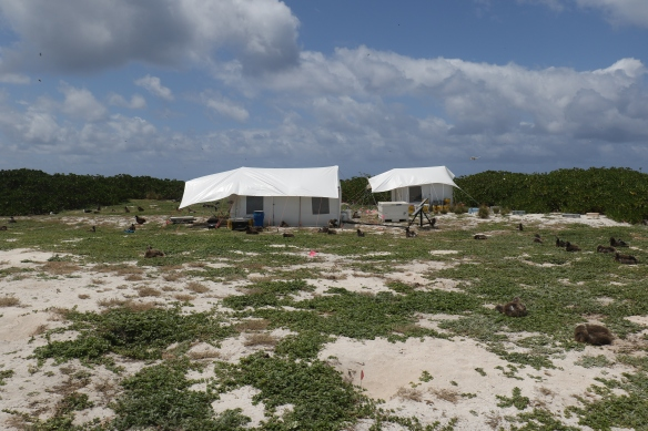 KUR_camp